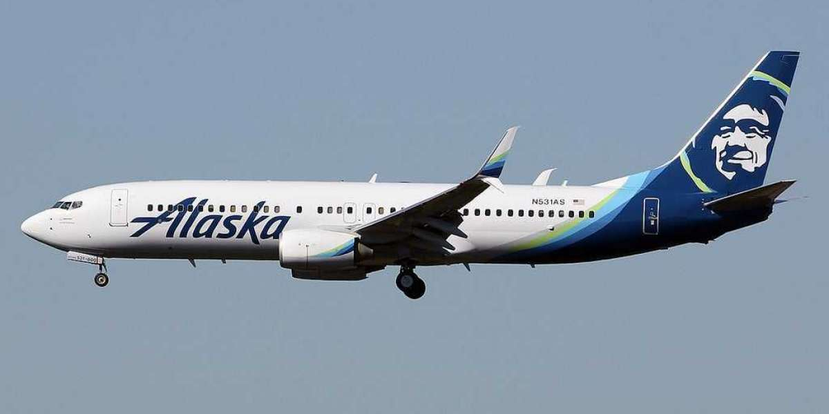 Alaska Airlines Pet Policy Guide